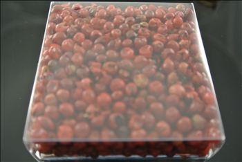 Roze peper 15gr GIN TASTE KAZART